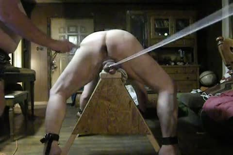 fat Daddy acquire tied Up On His Sawhorse, Then Spanked And Balls Bashed.